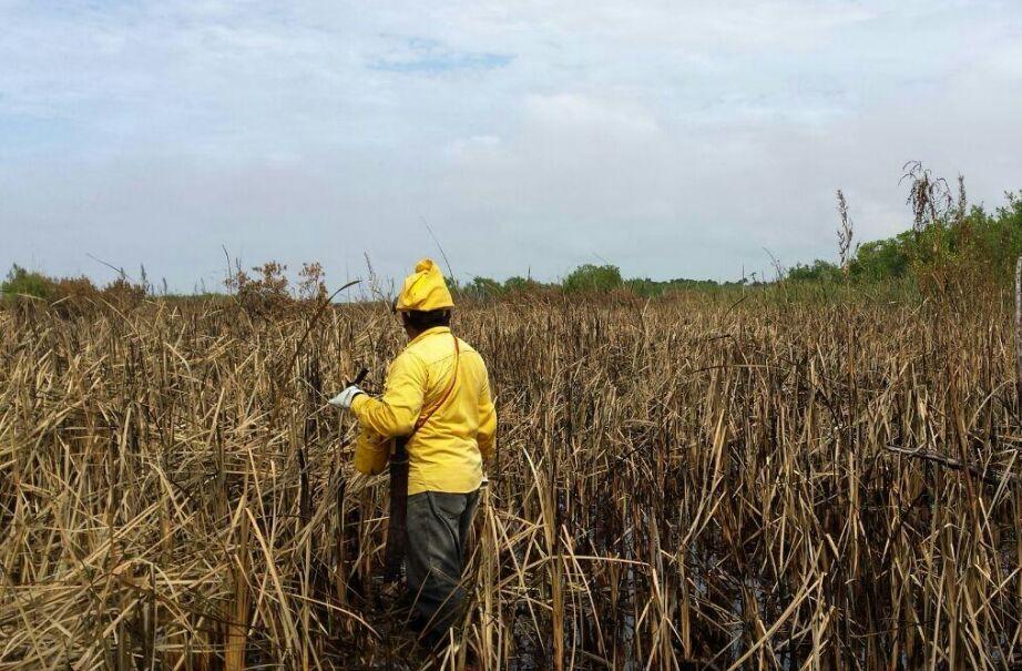 Entrará Primavera a Península de Yucatán con fuerte calor