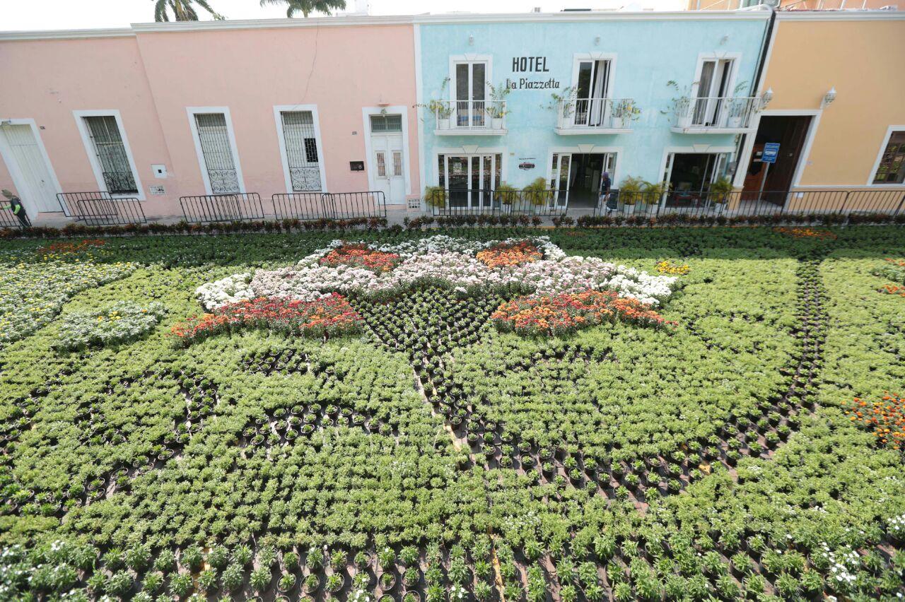 'Camino de Flores', exposición temporal en La Mejorada