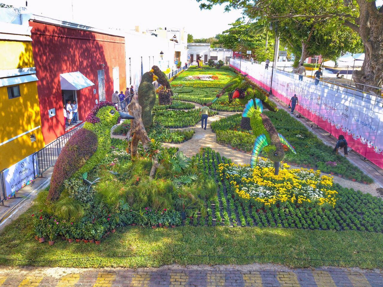 Esperan unos 50 mil visitantes en 'Camino de Flores'
