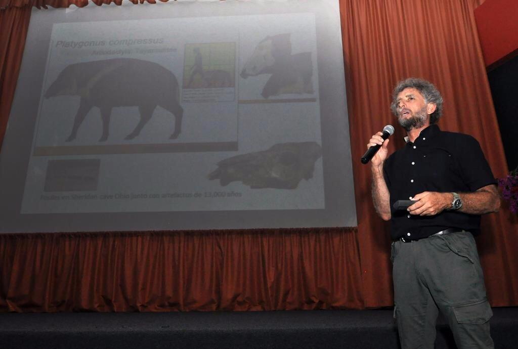 'Diseccionan' hallazgo de fósil milenario en Tulum