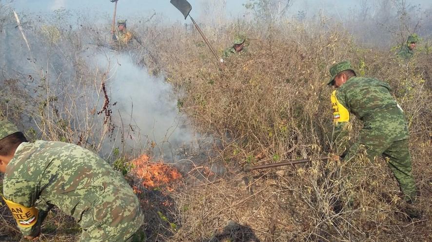 Sofocado incendio en tramo carretero Citilcum-Cacalchén