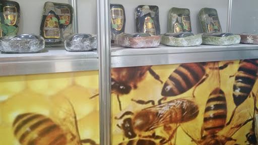 Sequía 'amarga' la temporada a apicultores yucatecos