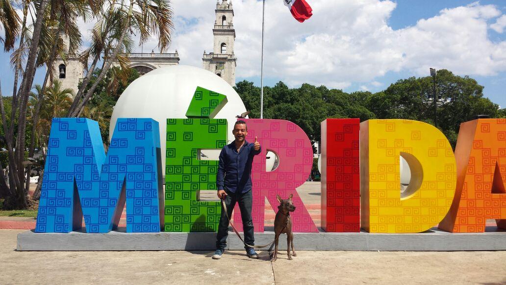 Solitaria cruzada por la paz en Península de Yucatán