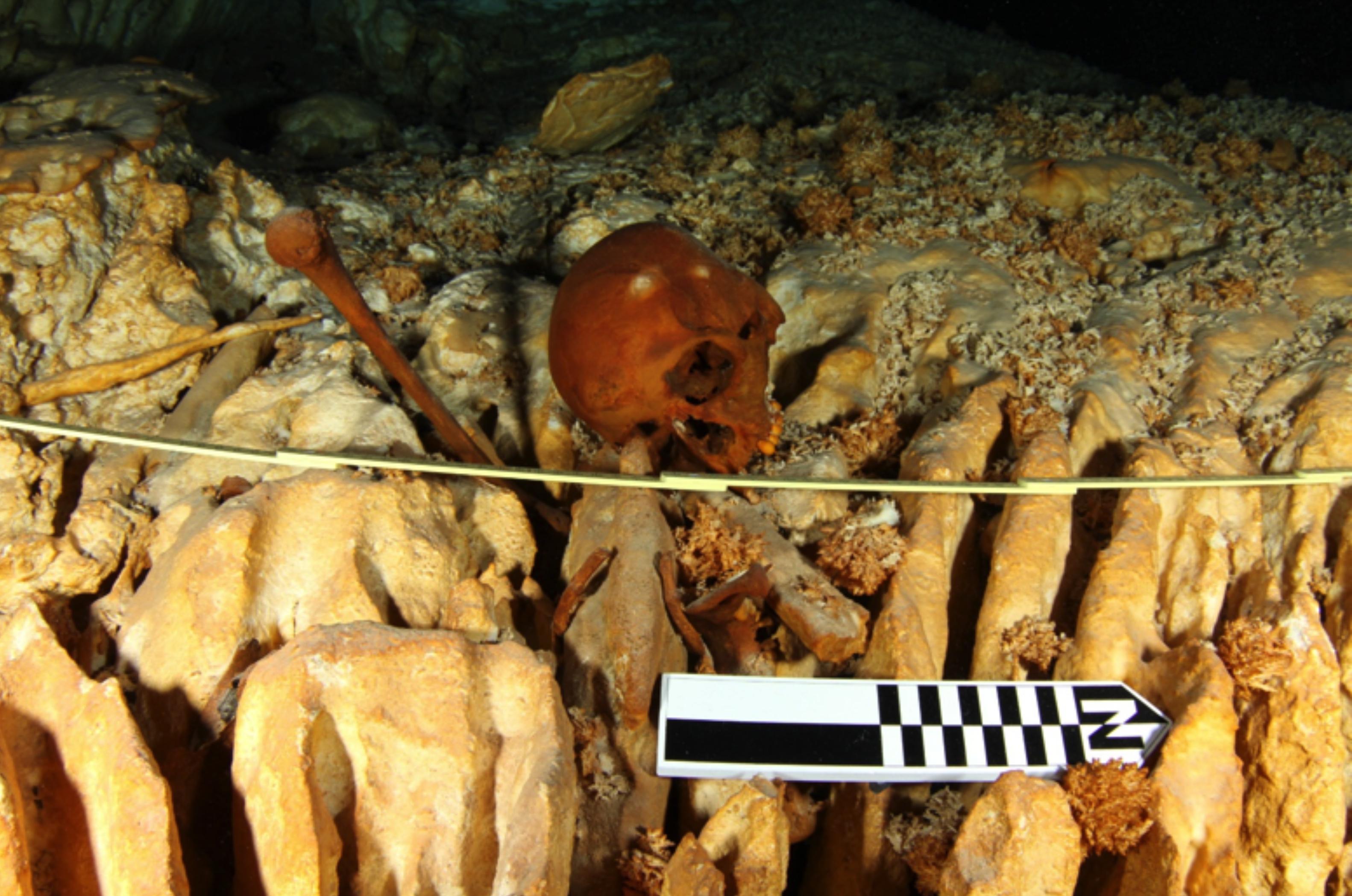 Difundirán más hallazgos sobre Naia, el esqueleto más antiguo de América