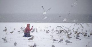 winter_weather_new_yo_garc