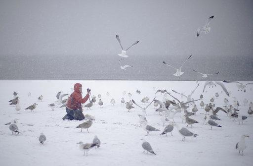 Nueva York declara estado de emergencia por tormenta de nieve