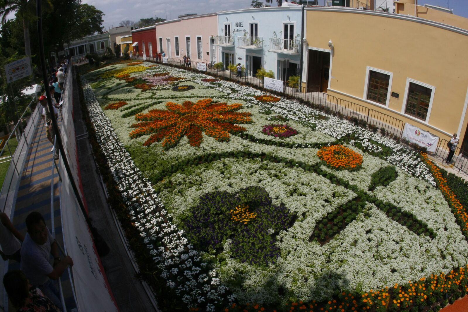 Prolongarán exhibición de Camino de Flores