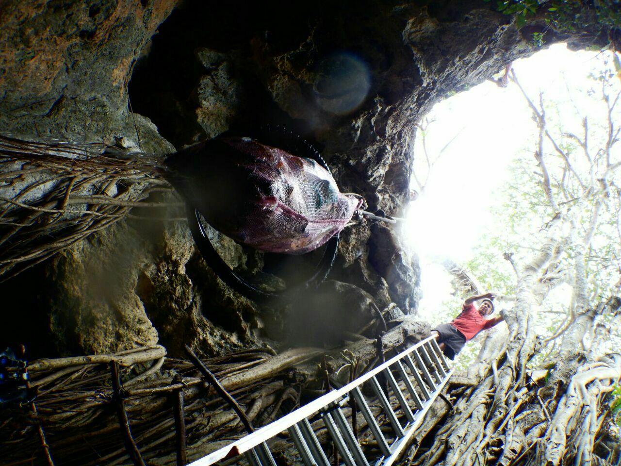 Limpian cenote Ekuhe en comisaría de Umán