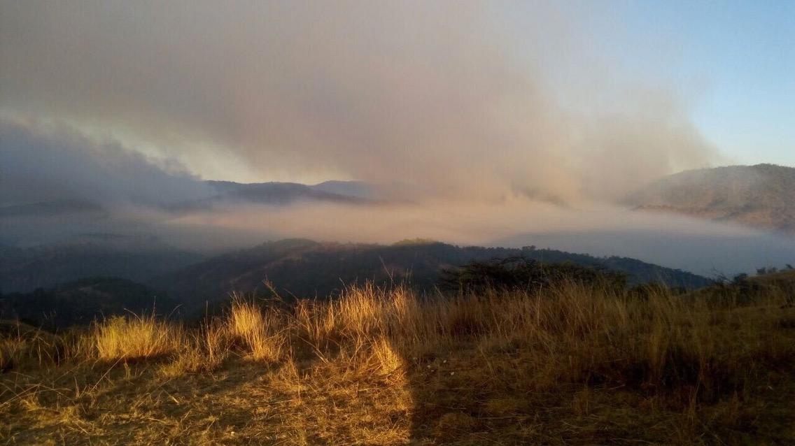 Controlan incendio en Río Lagartos