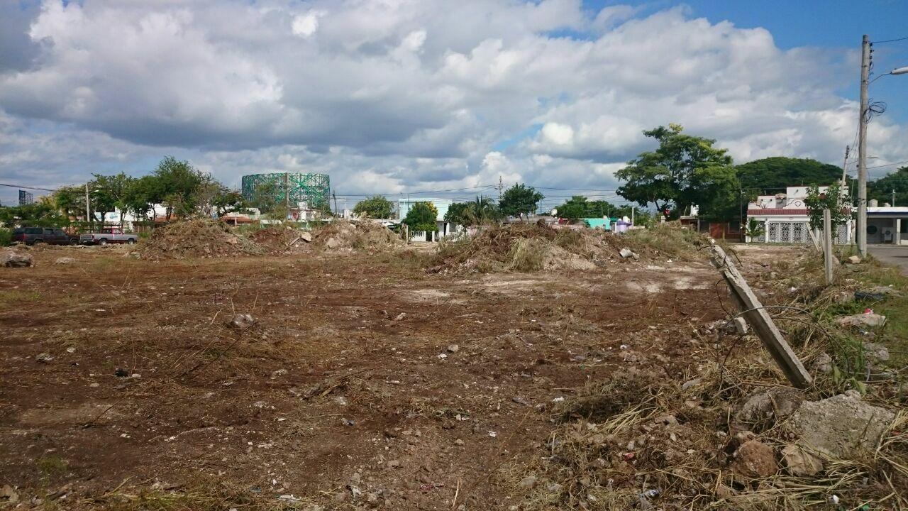 Expansiónurbana en Mérida, letal para 'capa verde'