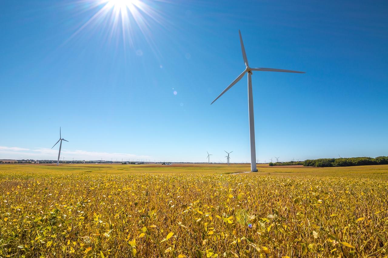 Cuestionan mega proyectos de energía renovable en Yucatán