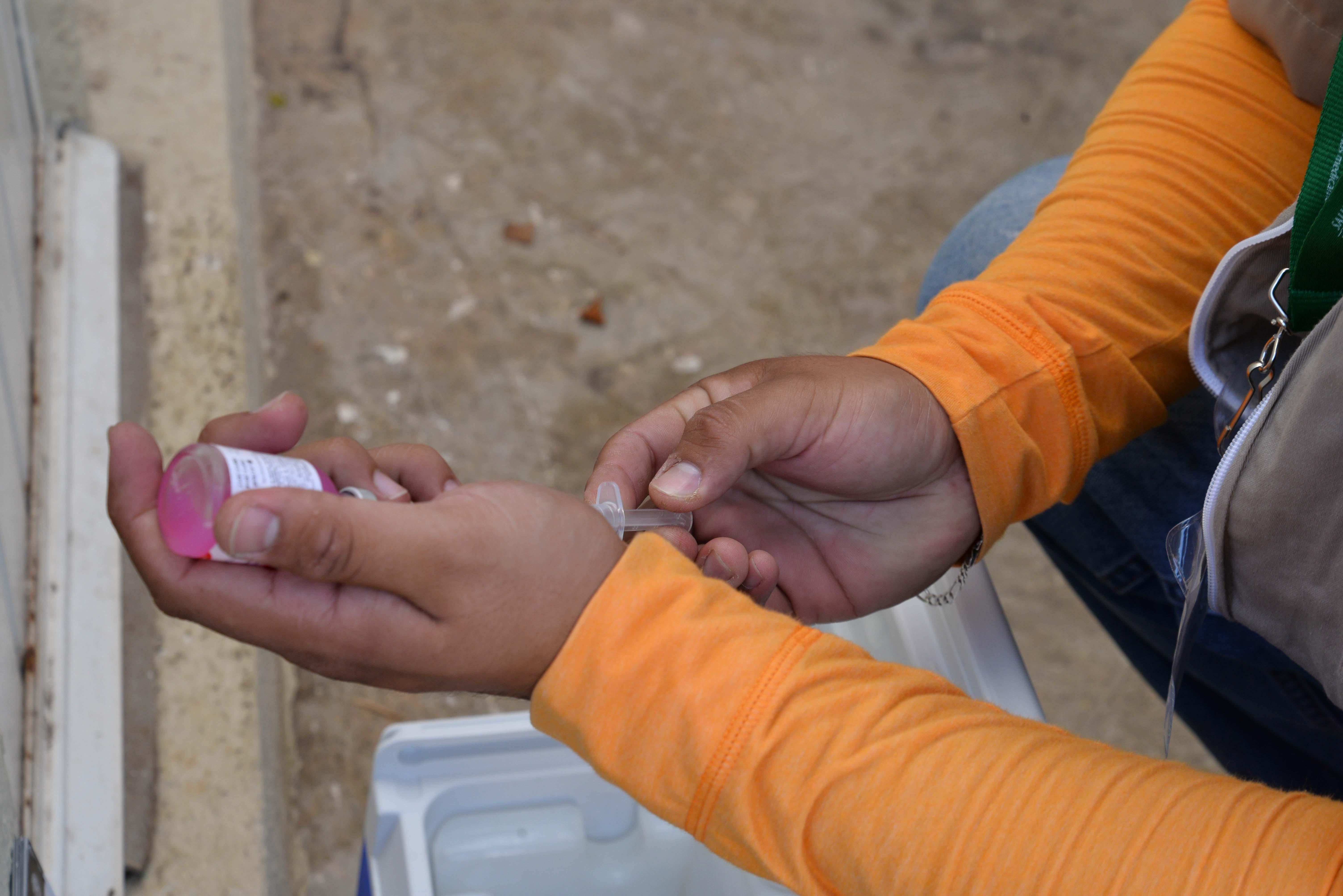 'Focos rábicos' ponen en riesgo estatus en Yucatán