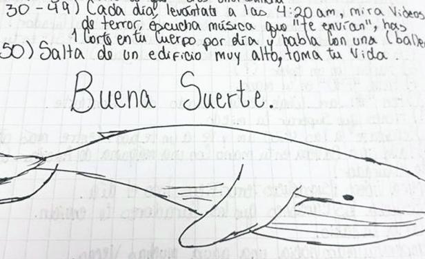 """""""La Ballena Azul"""" podría haber llegado a Yucatán"""