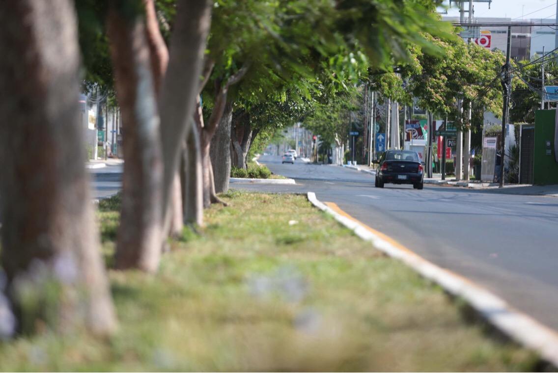 Cambia fisonomía de avenida Andrés García Lavín