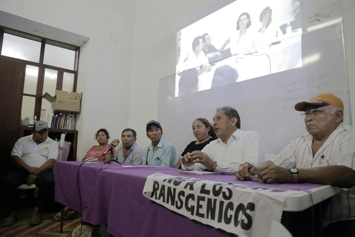 Pronunciamiento de colectivo maya que lucha contra transgénicos