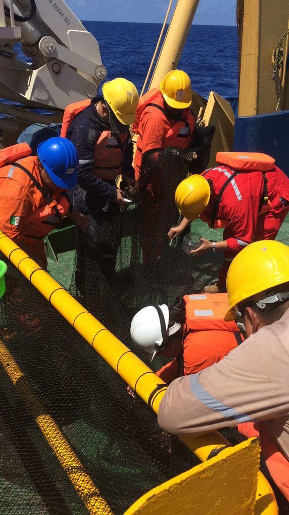 Expedición científica halla nuevas especies en abismos marinos