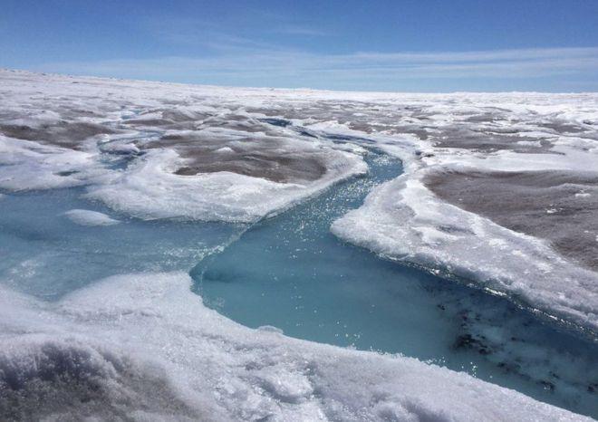 ¿Por qué se está oscureciendo la capa de hielo en Groenlandia?