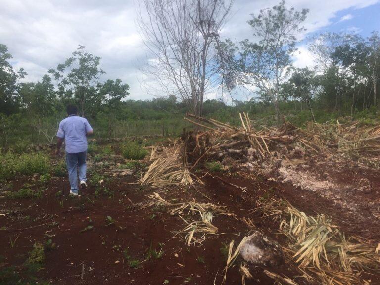 Latente lío por despojo a 114 familias en Chichimilá