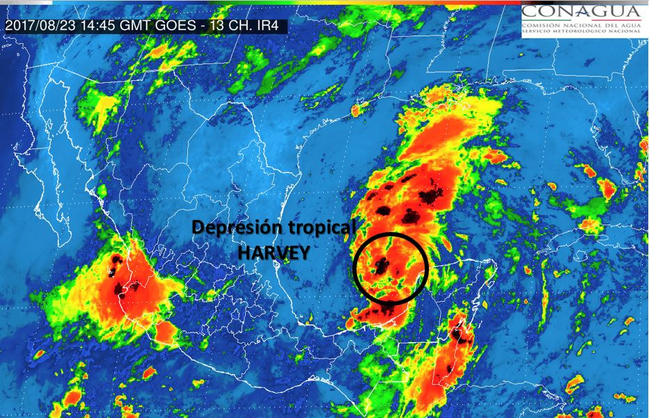 'Revive' Harvey' en aguas del Golfo de México