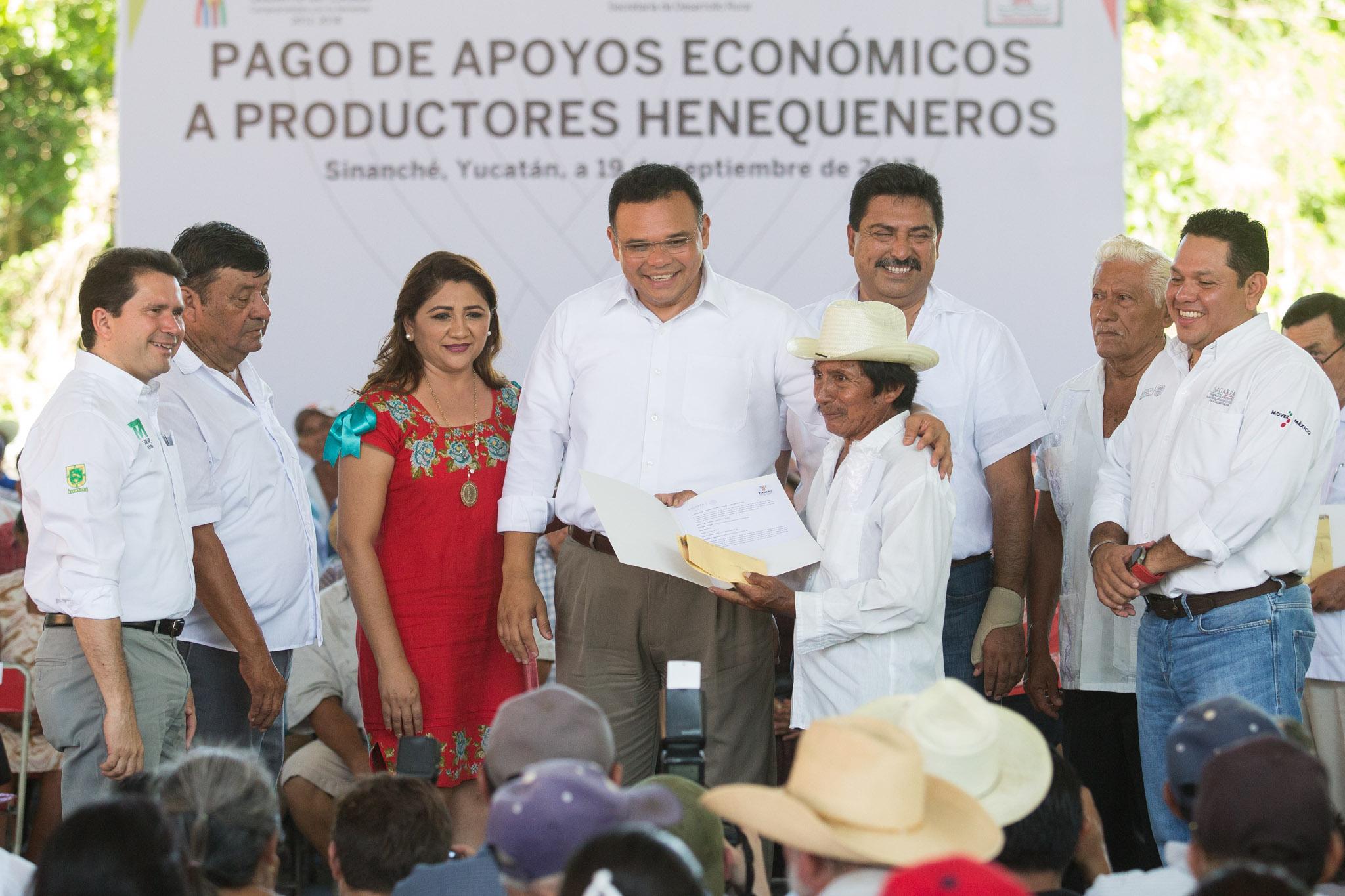Visión optimista respecto a henequén yucateco