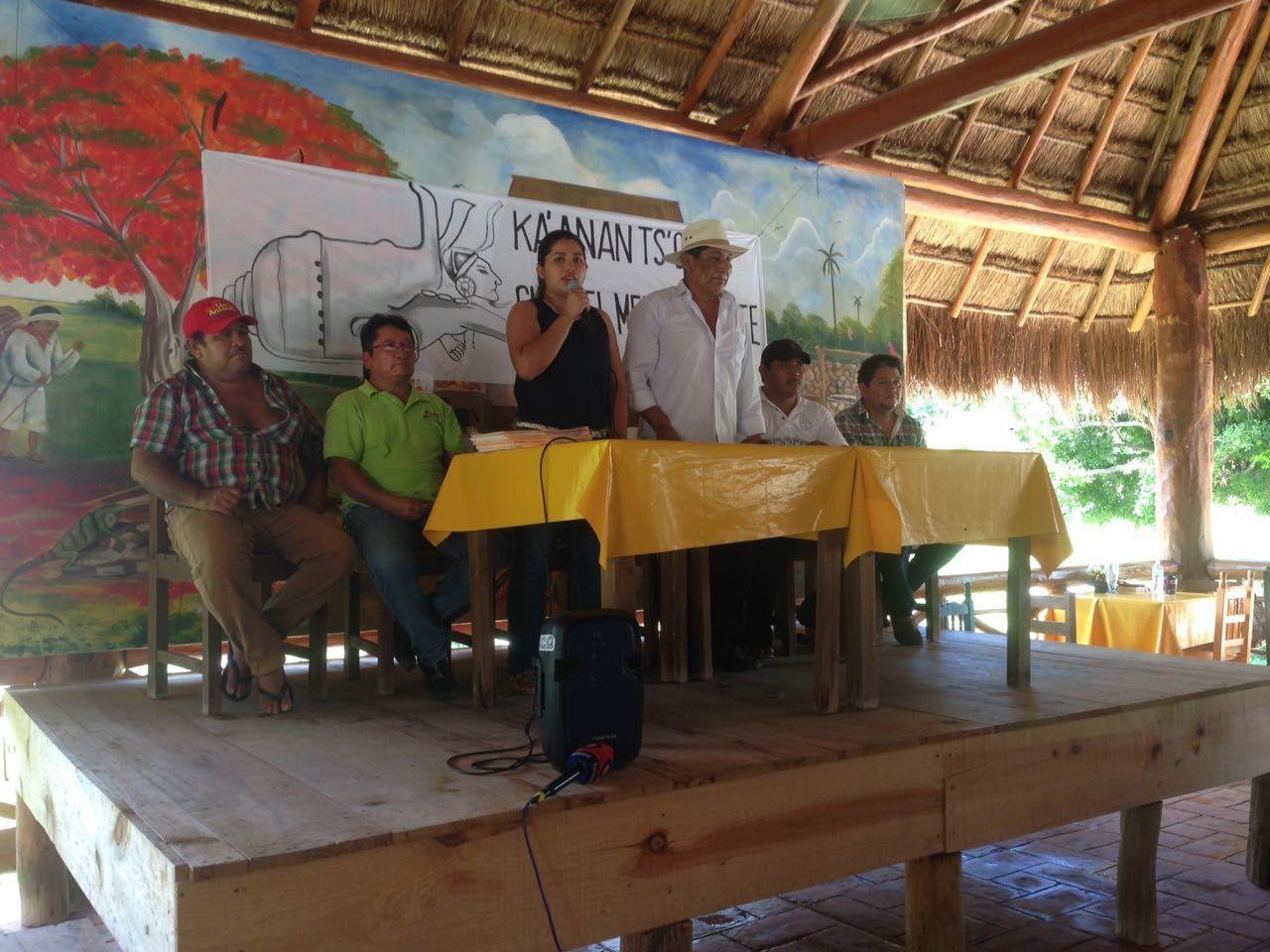 Consulta definiría futuro de mega granja porcícola en Homún