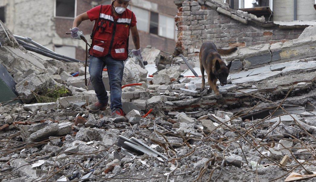 Preliminar: urgen casi 40 MMDP para reconstrucción por sismos