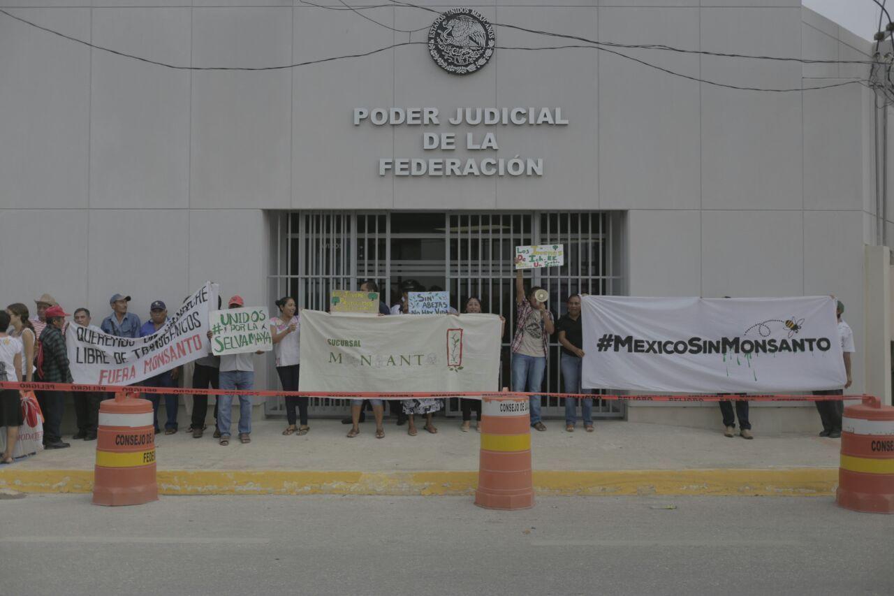 Activistas y líderes mayas protestaron contra Monsanto