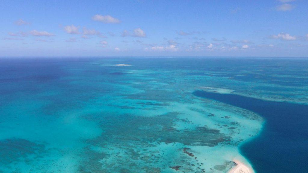 arrecife_alacranes2
