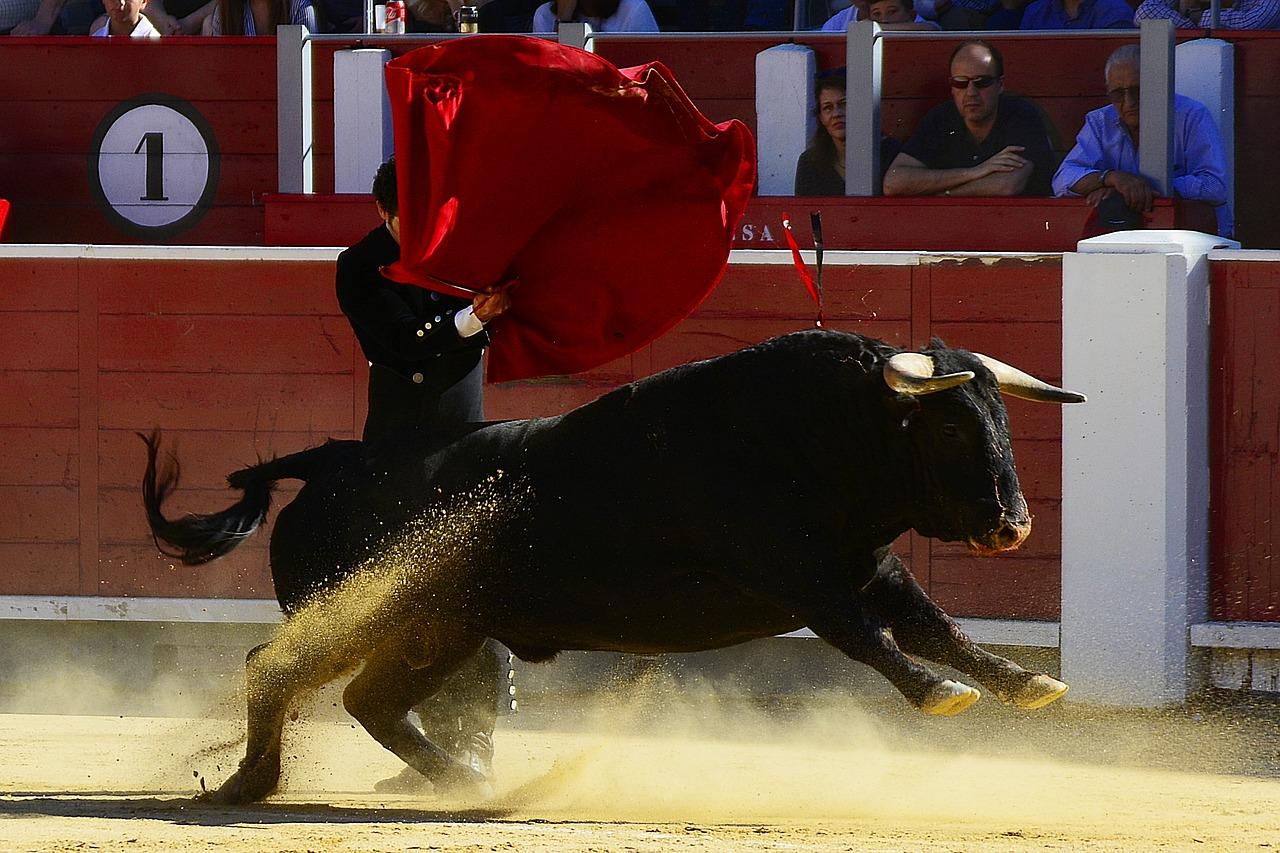 """Corridas de toros en Yucatán """"confrontan"""" a antropólogos"""
