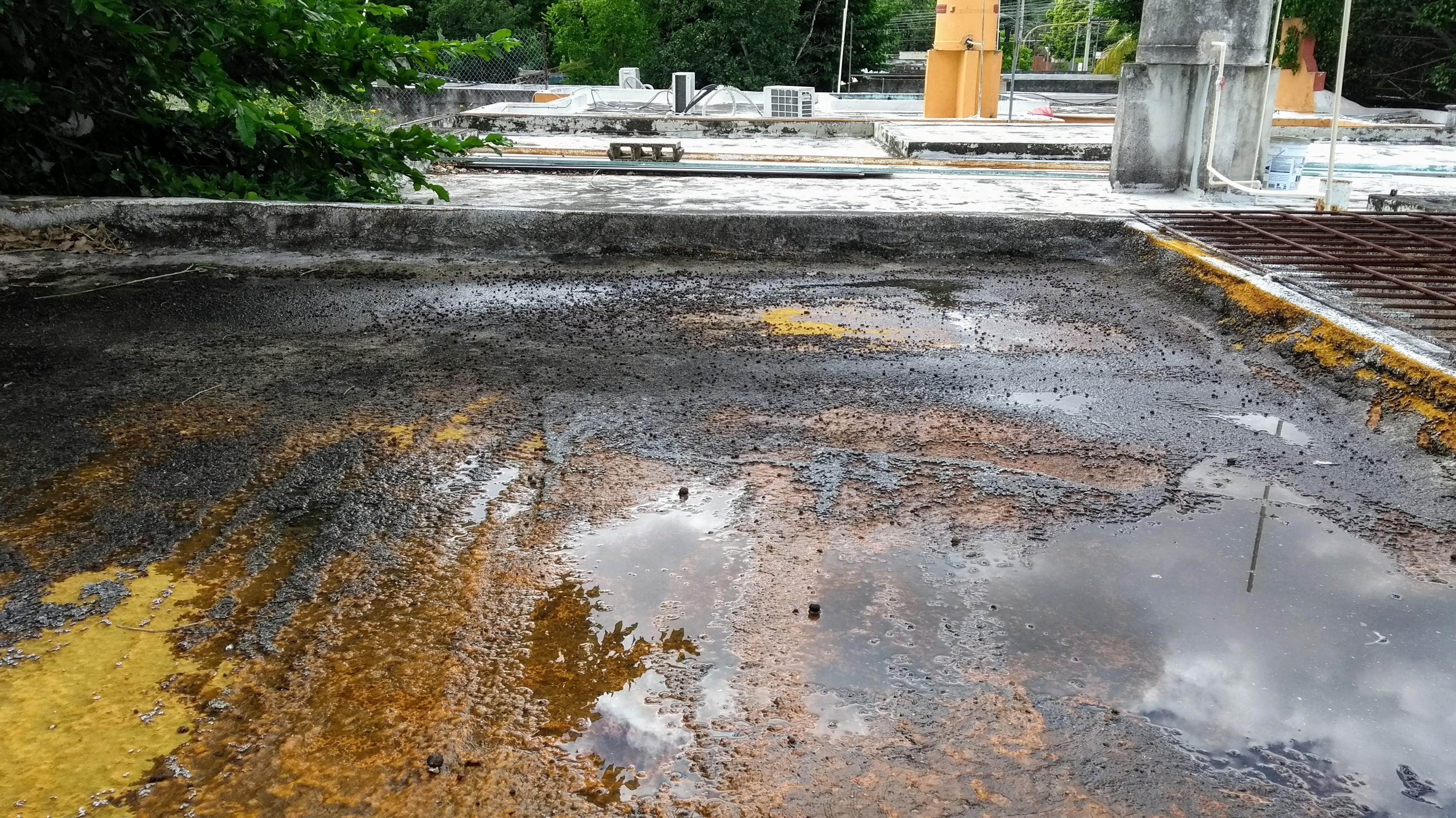 Venden en Yucatán impermeabilizantes que ¡calientan las casas! (video)
