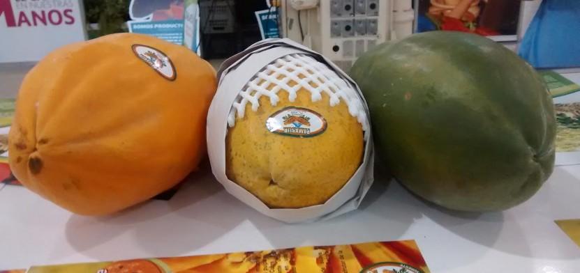 Abren encuentro de productores y científicos en torno de la papaya