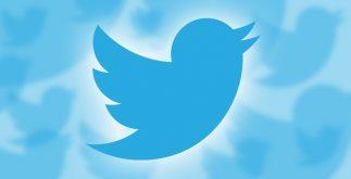 twitter_bird1