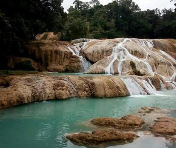 Buscan revertir sequía en Cascadas de Agua Azul