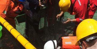 Foto Técnicos petroleros