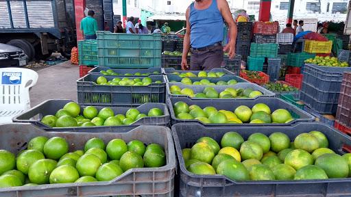 Prevén sobreprecio del limón al 100% a principios de 2018