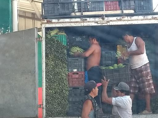 """Antorchistas en Yucatán buscanrespuestas antes de """"veda electoral"""""""