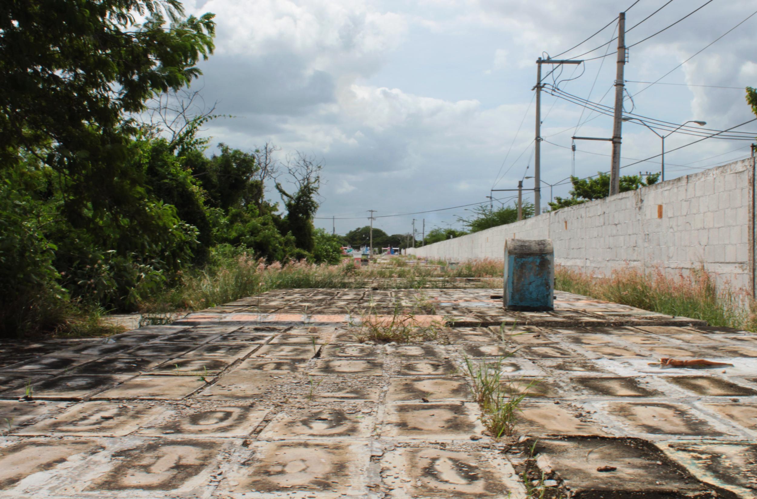 Los muertos de nadie: un <i>viaje</i> a la fosa común (fotos y video)
