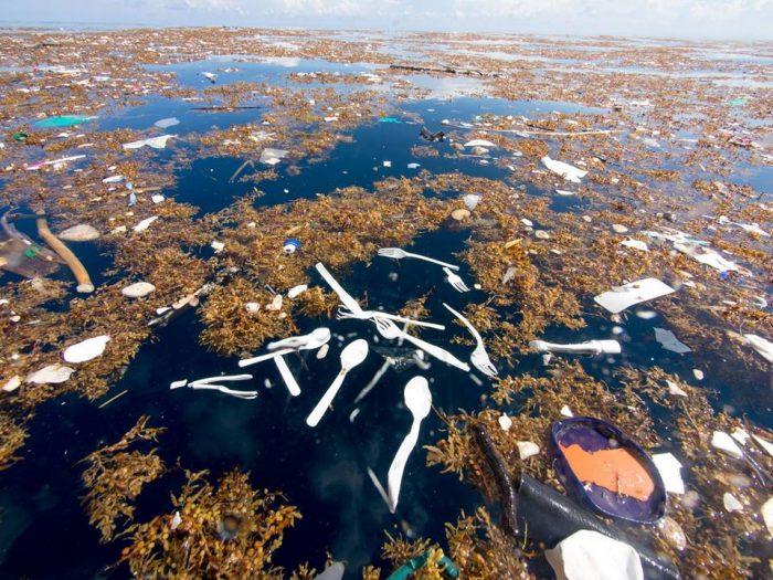 """Descubren """"mar de plástico"""" frente a costa de Honduras"""