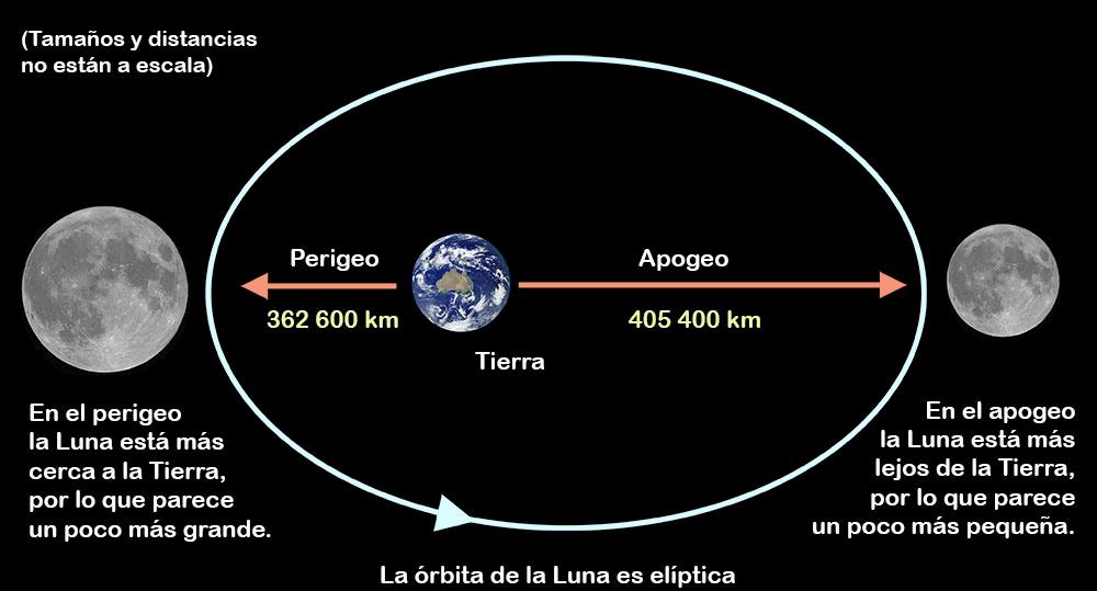 Ni la órbita de la Luna es redonda ni la Tierra está en el centro de esta elipsis. (statics.naukas.com)