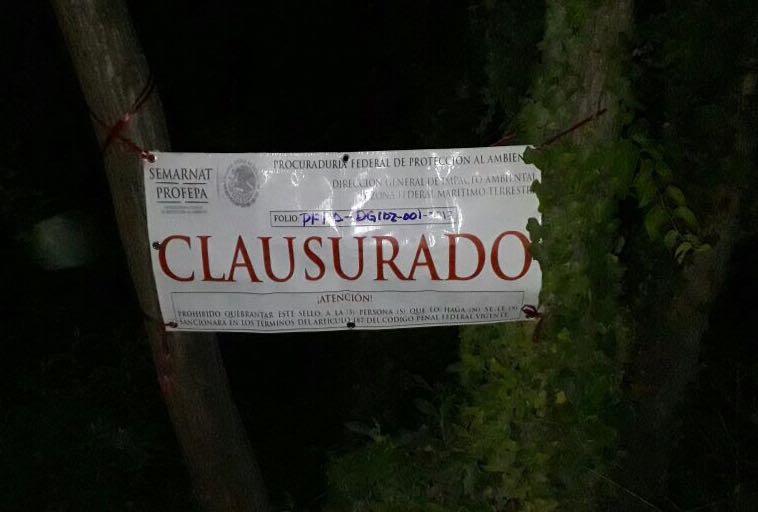 Clausura Profepa obra del gobierno de Campeche