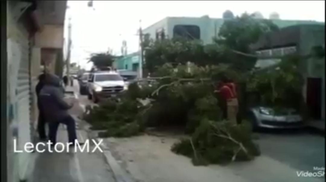 Frente Frío ocasiona algunos destrozos en Campeche