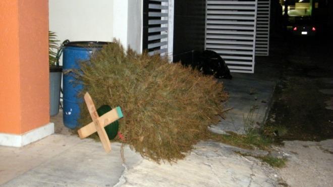 Esperan fiestas sin basura ni pinos en calles de Mérida