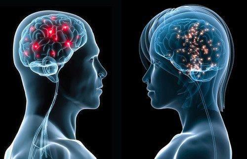 ¿A los hombres se les atrofia más rápido el cerebro que a las mujeres?