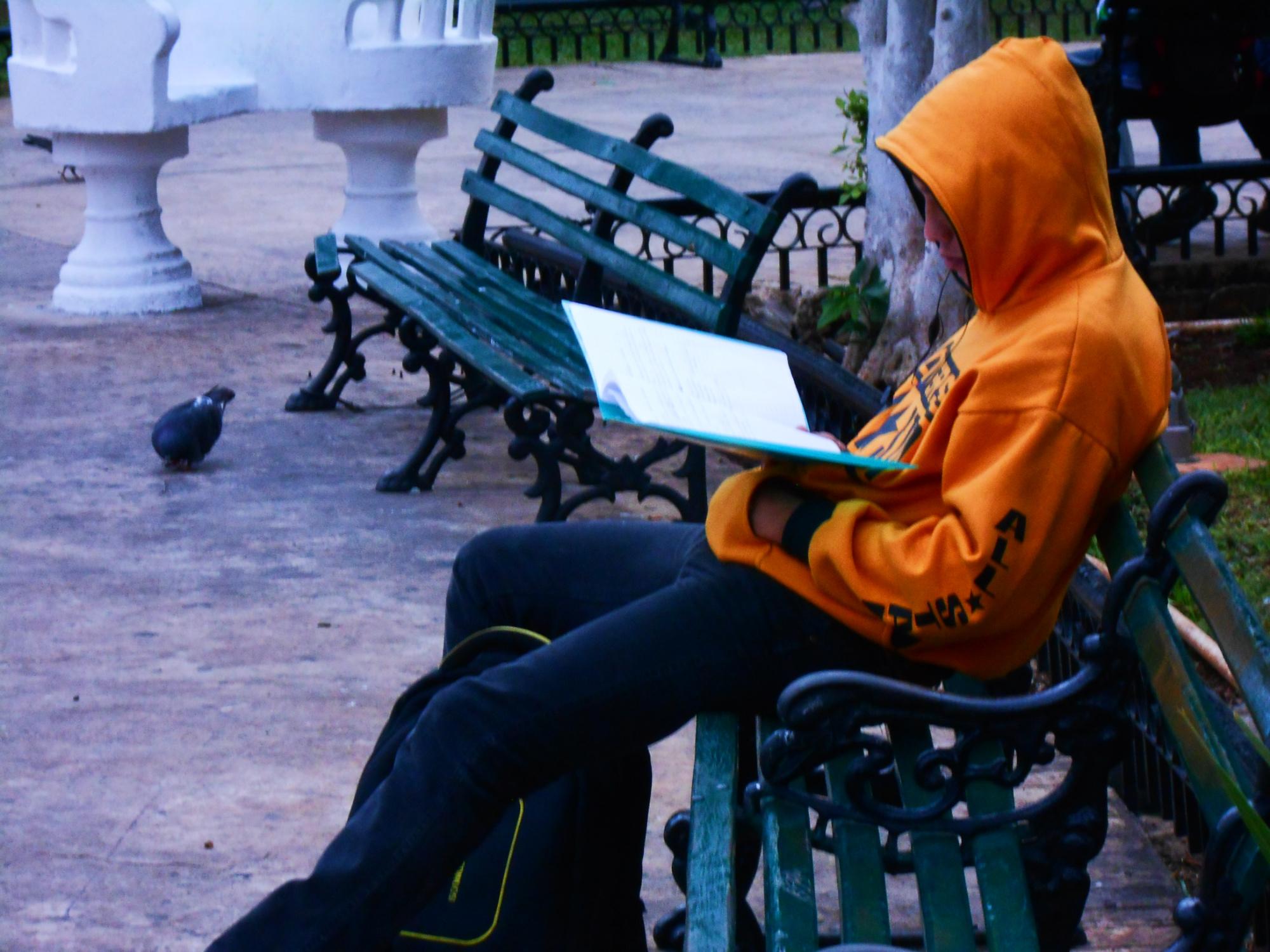 Llega el frío este viernes a Yucatán: termómetro bajará a 10 grados (video)