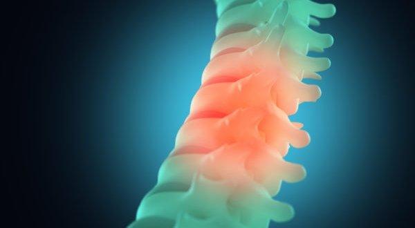 Mexicanos desarrollan polímeros para mejorar recuperación de lesión medular