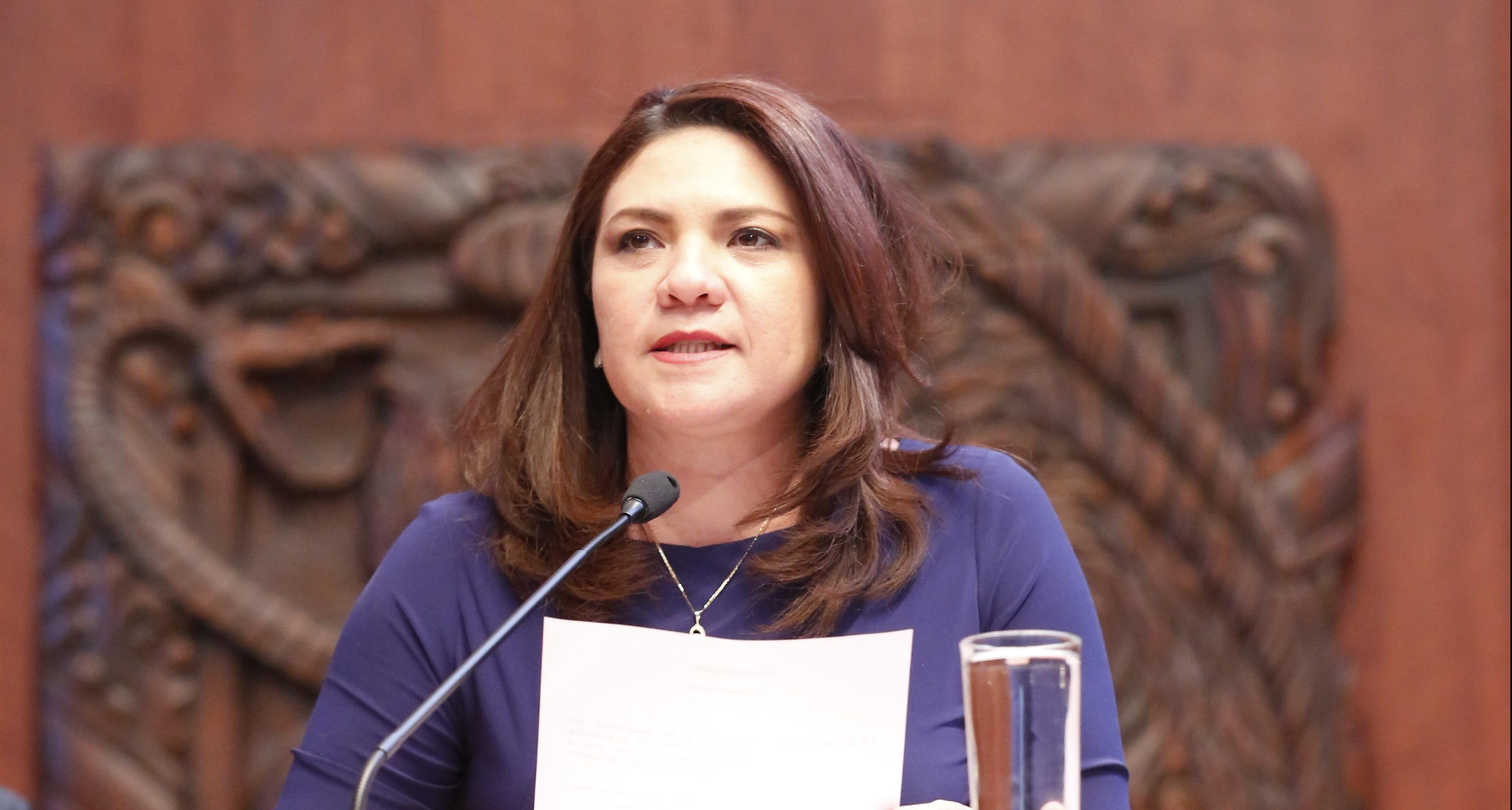 Senadora yucateca explica voto en contra de Ley de Seguridad Interior