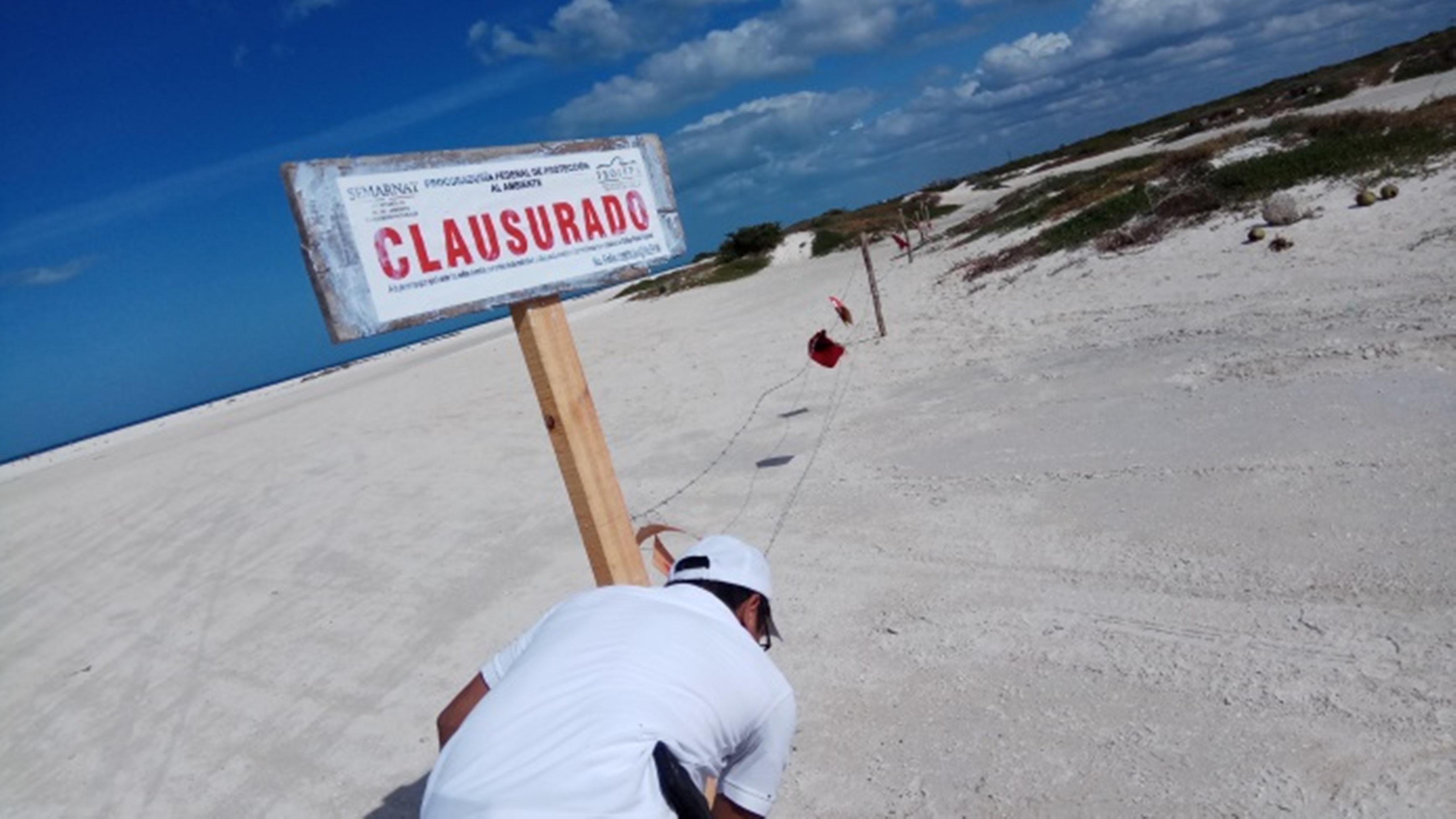 Clausura Profepa 5.2 hectáreas por delimitación ilegal en Chuburná Puerto