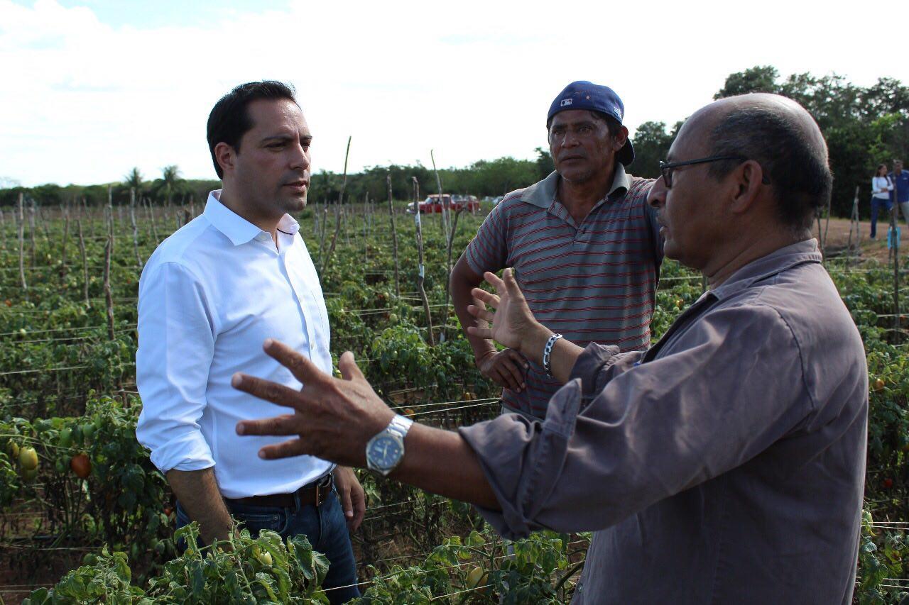 Inicia Mauricio Vila precampaña en el interior del Estado
