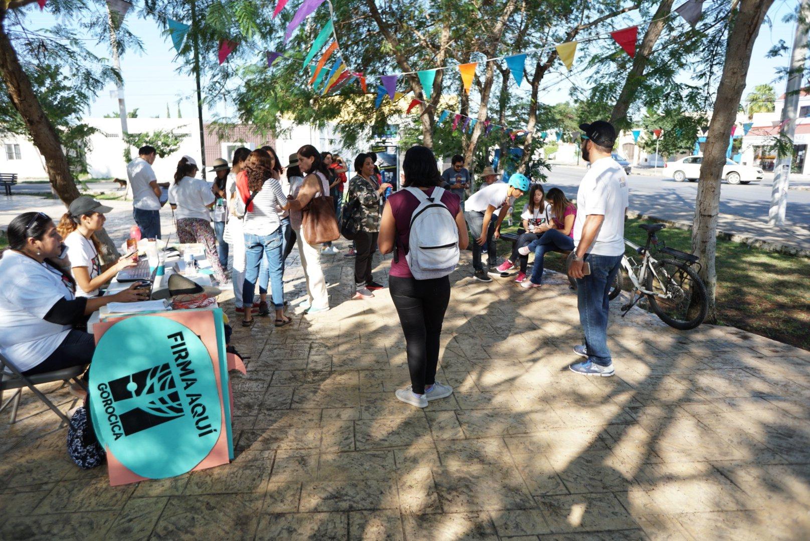 De 25 aspirantes independientes en Yucatán, sólo 5 en boletas