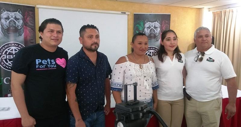 VieneprimeraGran Expo American Bully y APBT Yucatán 2018